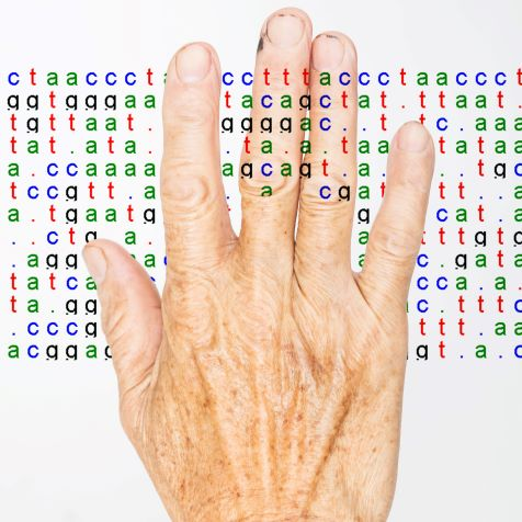 DNA code overlying old man's hand