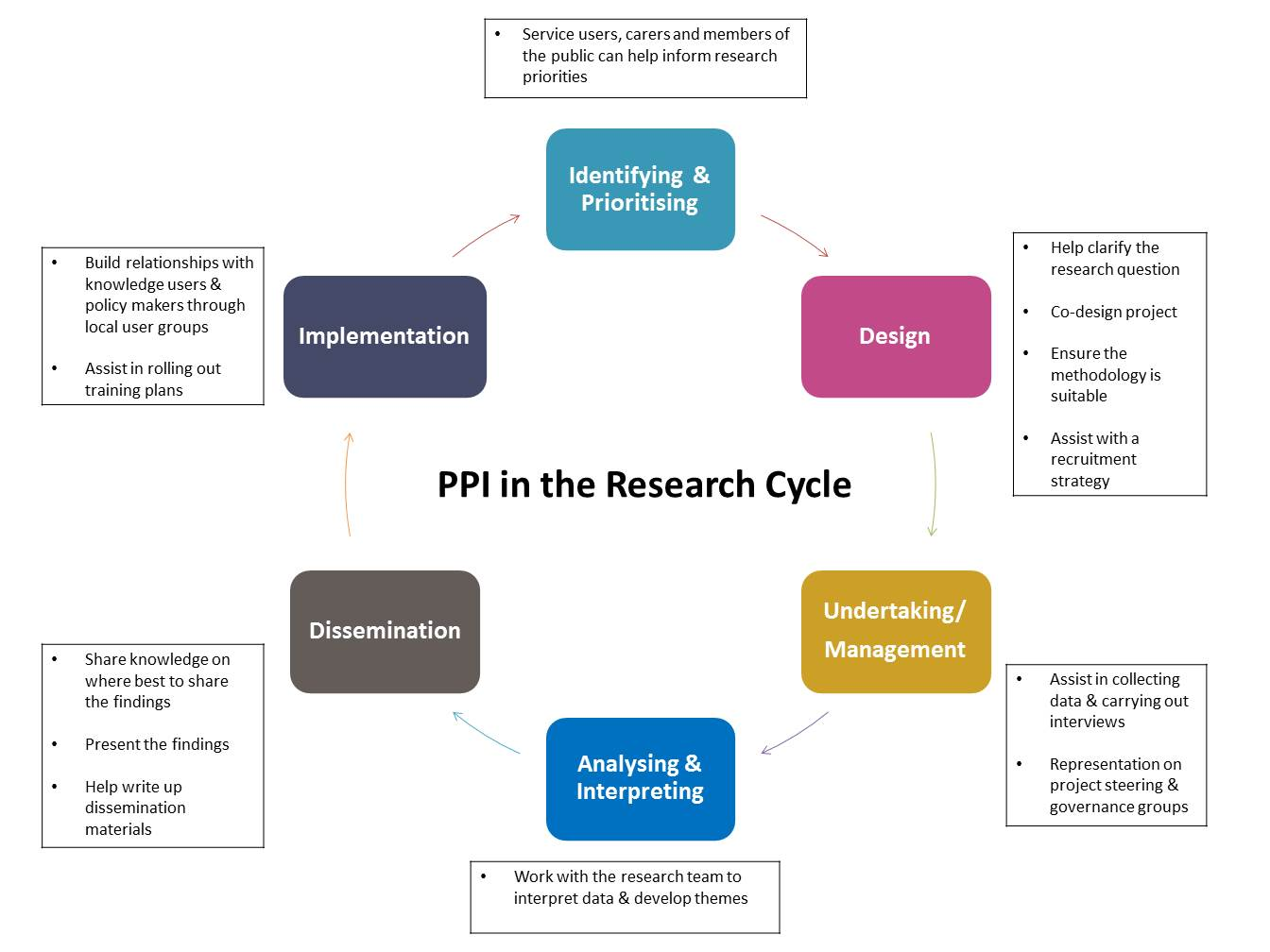 PPI in the research cycle image with examples of PPI