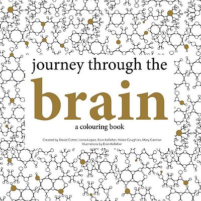 Cover of journey through the brain